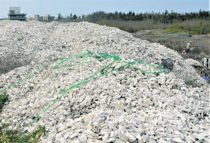 澎湖縣馬公國中自造者基地與北科大合作創意激發了能量「貝殼磚」