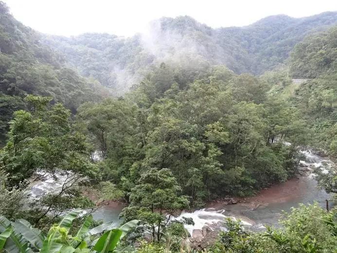 森林具有多種生態系服務功能。
