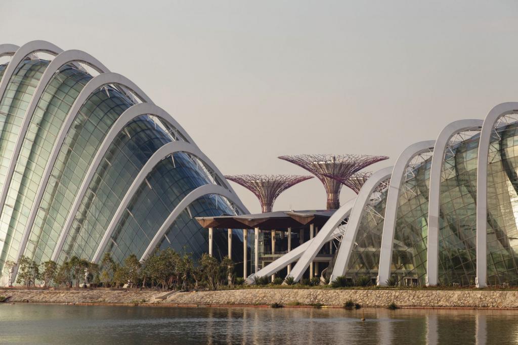 WilkinsonEyre建築事務所與Grant Associates合力操刀的濱海灣花園迷人溫室設計。