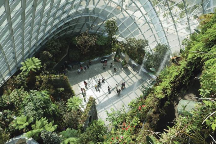 新加坡濱海灣花園的雲霧森林一景。