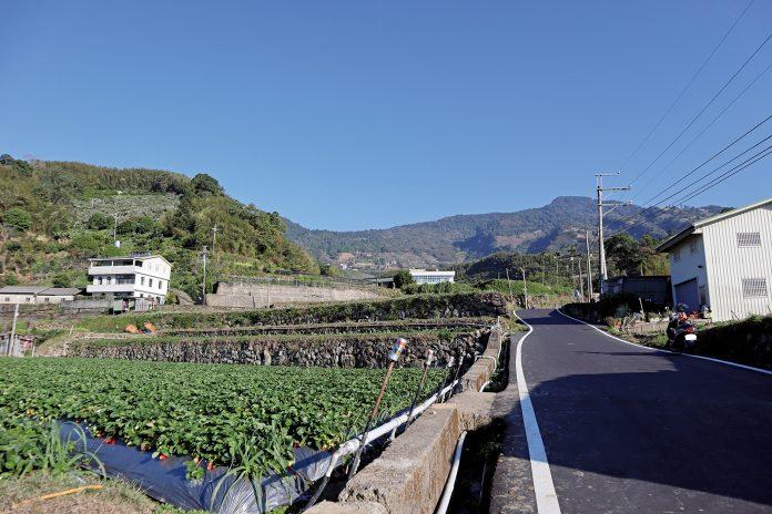 馬拉邦山的草莓石牆梯田。利果園長久發展。