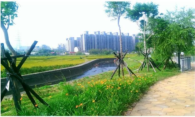 圖 6 台中文山水資源 - 人行步道