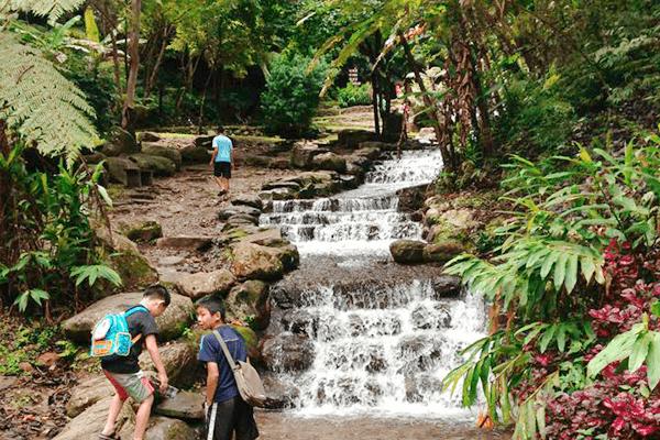 景觀生態池